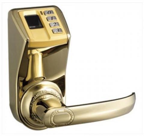 Khóa cửa vân tay ADEL DIY-3398
